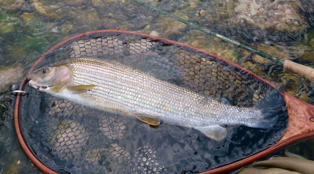 Le camping avec la pêche ekaterinbourg